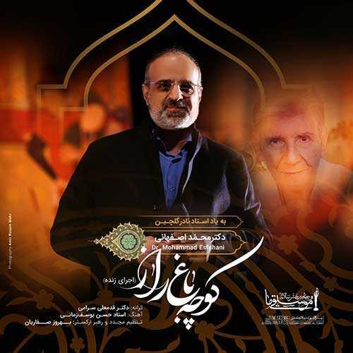 دانلود آهنگ جدیدمحمد اصفهانیبه نامکوچه باغ راز