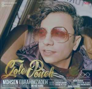 Mohsen Ebrahimzadeh Gole Poone 300x292 - دانلود آهنگ جدیدمحسن ابراهیم زادهبهنام گل پونه