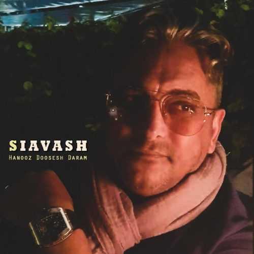 دانلود آهنگ جدید سیاوش شمس به نام هنوز دوست دارم