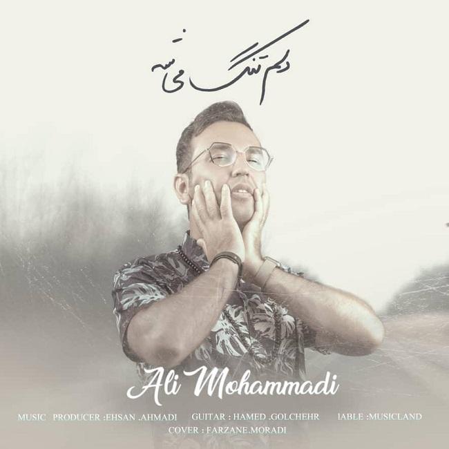 دانلود آهنگ جدید علی محمدی به نام دل تنگ میشه