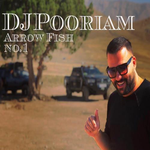 دانلود آهنگ جدید دیجی پوریام به نام Arrow Fish No1